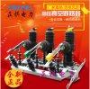 正祺电力ZWF21-12柱上永磁真空断路器厂家直销