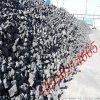 铸造焦炭价格,铸造焦炭厂家,山东铸造焦炭厂家直销2016