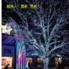 专业制作绕树灯元旦春节装饰布置庭院树木灯光亮化安装
