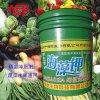 爱福地桶装冲施肥 甲壳素海藻钾 含氨基酸水溶肥