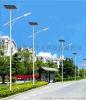 供应太阳能路灯 30W乡村照明路灯小区户外防水LED太阳能道路灯