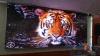 P8全彩LED,戶外LED顯示屏,室內LED顯示屏