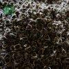 云南满泽印度优质辣木籽种子供应应批发