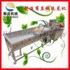 热销果蔬清洗漂烫机 苹果 土豆清洗机 苹果干加工设备 环保型