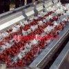 厂家直销蔬菜气泡翻浪清洗机 毛刷果蔬气泡清洗机 气泡式叶类果蔬清洗机
