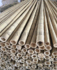 FD-161023厂家大量供应优质毛竹