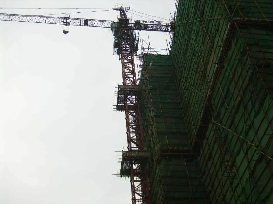 塔吊租赁(qtz315,qtz40)