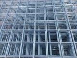 电焊网片 电焊网养殖笼 GFW电焊网 热镀电焊网 改拔电焊网 不锈钢电焊网