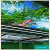 LT026 PVC 軟膜用於天花裝飾/ 廣告印刷