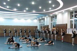 舞蹈塑膠地板品質一流10多年的老品牌質量放心