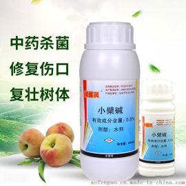 桃树流胶病怎么控制 用溃腐灵中草药杀菌剂