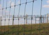 圈牲畜围栏网, 批发动物养殖网, 草原用网,  牛栏网,  养殖围栏网