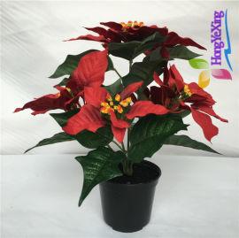 仿真花卉绢花 圣诞花 一品红 仿真植物