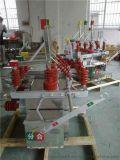 10K高压双电源切换开关HZW10-12 双隔离真空断路器