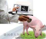 猪用B超机 厂家直销 母猪测孕仪 猪用B超机价格 B超机多少钱一台