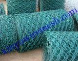 六角网(1/2 5/8)浸塑六角网、镀锌六角网