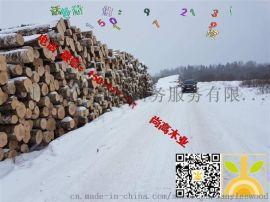 尚高木业长期供应AB级俄罗斯新鲜砍伐桦木原木