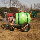 旭阳农用植保机械 汽油高压打药机