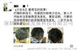 深圳市致赢广西巴马茶麸纯天然洗发水招代理商