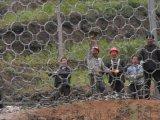 厂家供应山体主动护坡防护网@山体被动拦石网