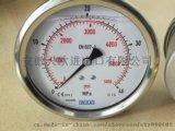 WIKA温度计F73.100