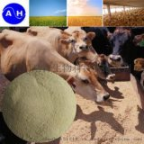 氨基酸蛋白饲料级优质产品 工厂直销