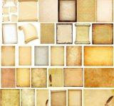 造纸专业羧甲基纤维素钠