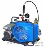 宝华+JII+100L+空气填充(充气)泵