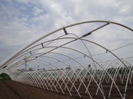 大棚鋼管廠、菜種植大棚、家畜養殖大棚、大棚方管、大棚鍍鋅方管、大棚鍍鋅鋼管、鍍鋅帶大棚管、熱鍍鋅管、大棚配件
