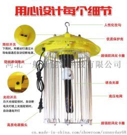 交流電魚塘殺蟲燈誘殺燈