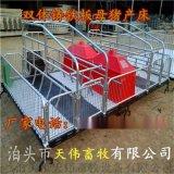 养猪场规划母猪产床设计河北养猪设备厂家