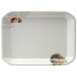 美耐皿長託盤 (密胺/科學瓷)(ZZ9022)