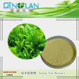 綠茶提取物 10: 1綠茶濃縮粉 抗氧化抗輻射 綠茶粉