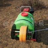 直供手推式农用打药机汽油高压远射程喷雾器