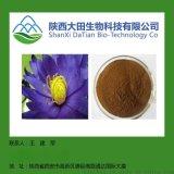 现货蓝莲花提取物10:1 Nymphaea coerulea