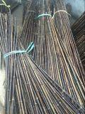 FD-172202装饰装潢乐器竹竿自然黑色竹竿
