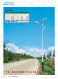 新农村太阳能路灯 6米 真正厂家直销
