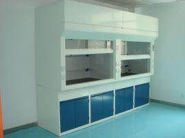 全钢通风柜枫津实验室设备FJ-QGTFG1