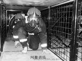 烟热迷宫体验室/迷宫烟热训练逃生笼