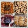 防氧化食品蔬菜水果雜糧水果蔬菜雞鴨魚肉食品真空包裝機