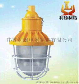 LED隔爆型投光灯/30w节能应急防爆投光灯厂家