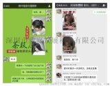 深圳市致赢生产LED贴片发光二极管1206翠绿