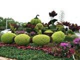 绿雕植物造型YP2018