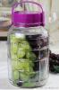 玻璃罐,小玻璃瓶,白酒玻璃瓶