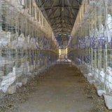鸽子笼厂家批发三层鸽笼 鸽子配对笼