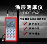 北京时代TT260FN涂层测厚仪高精度全能型