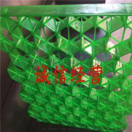 H50塑料植草格 完美的售后服务