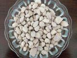 供應藥用級沸石粉,養殖沸石顆粒價格