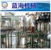 pet瓶木瓜飲料生產線 果汁飲料全自動灌裝機制造廠
