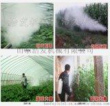 蔬菜远程喷洒弥雾机 可高度垂直喷射的脉冲弥雾机